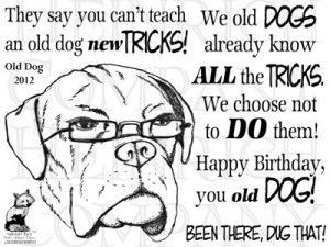 TT ch 67 Old Dog