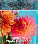 mixed mmc #4