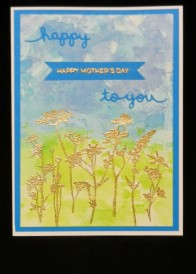 Mother Day for Nursing Home 1 2018