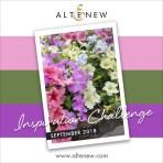 Altenew-2018-09-02