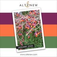Altenew-January2020-InpirationChallenge